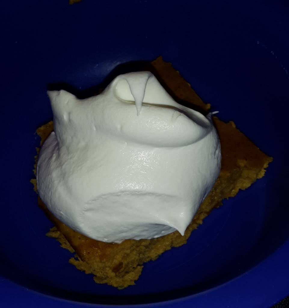 Low Carb Pumpkin Pie - So Yummy!