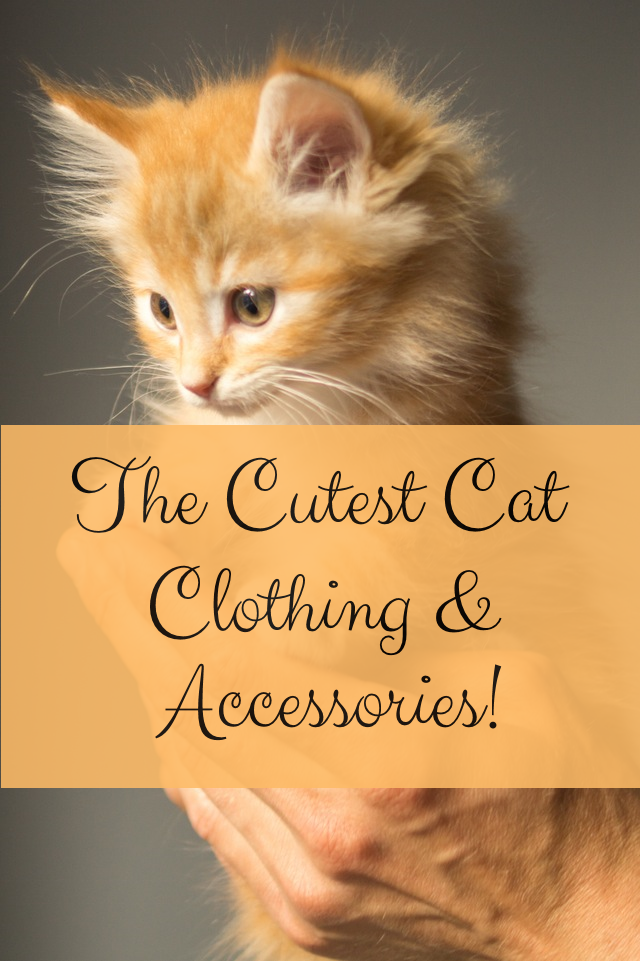 Gorgeous Cat Clothing and Accessories for the Cat Lover