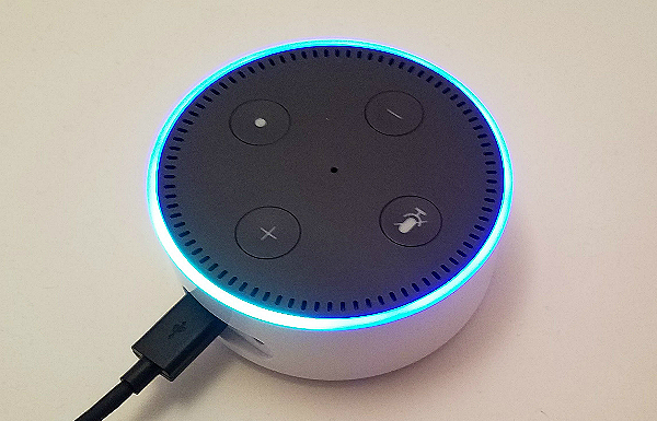 How to Keep Kids From Ordering Stuff Using Alexa