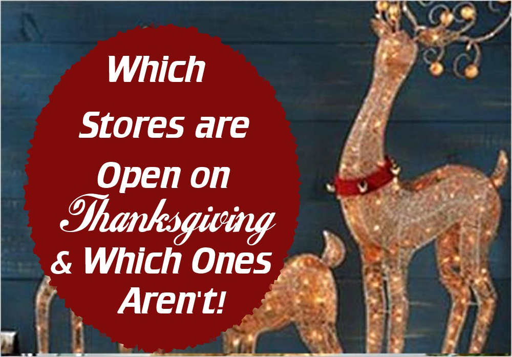 what stores are open on thanksgiving - photo #8