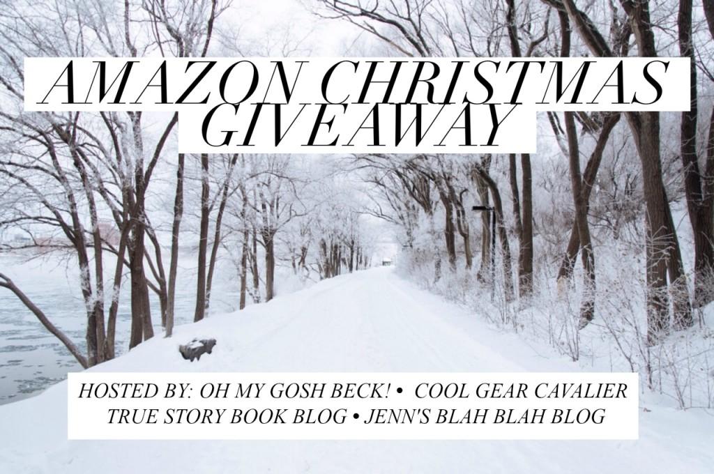 Amazon Christmas Giveaway
