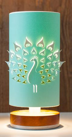 Cricut offers amazing ability bring a crafter's imagination to life