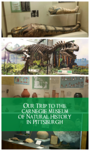 Our Visit to the Carnegie Museum of Natural History in Pittsburgh